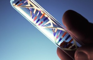 Dr Alba Reyes Now Offers Genetic Tests For Hair Loss Prediction and Prevention
